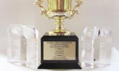 Islander named Best of Show at press awards
