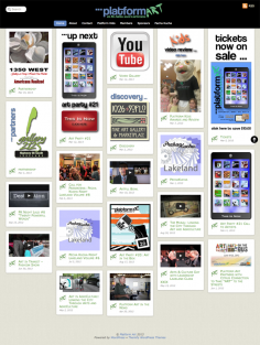 Platform Art, Florida – Website Redesign 2013
